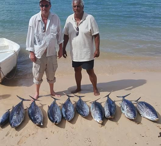 206LBS SKIPJACK TUNA - MAURITIUS BIG GAME FISHING - ANGLER FROM USA